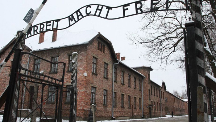Millennials, Gen Z lack in basic Holocaust knowledge, survey finds