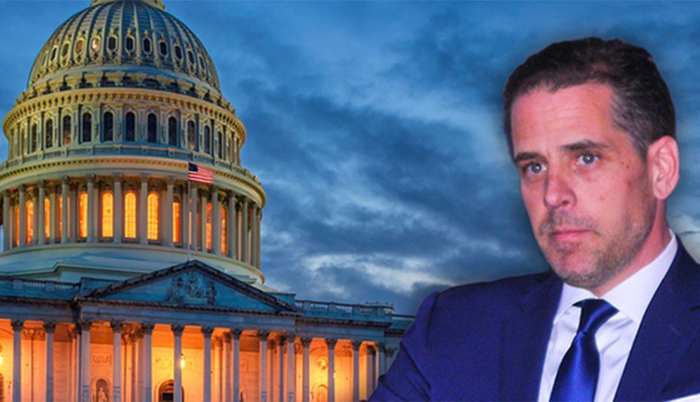 GOP-led committees release interim report on Hunter Biden, Burisma probe