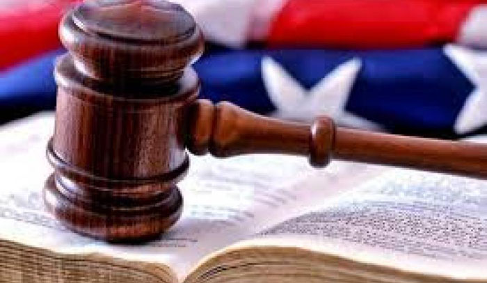 Federal Courts & the Public